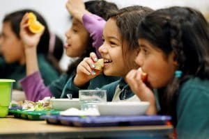 Make sure your school lunch programs follow nutritional standards.